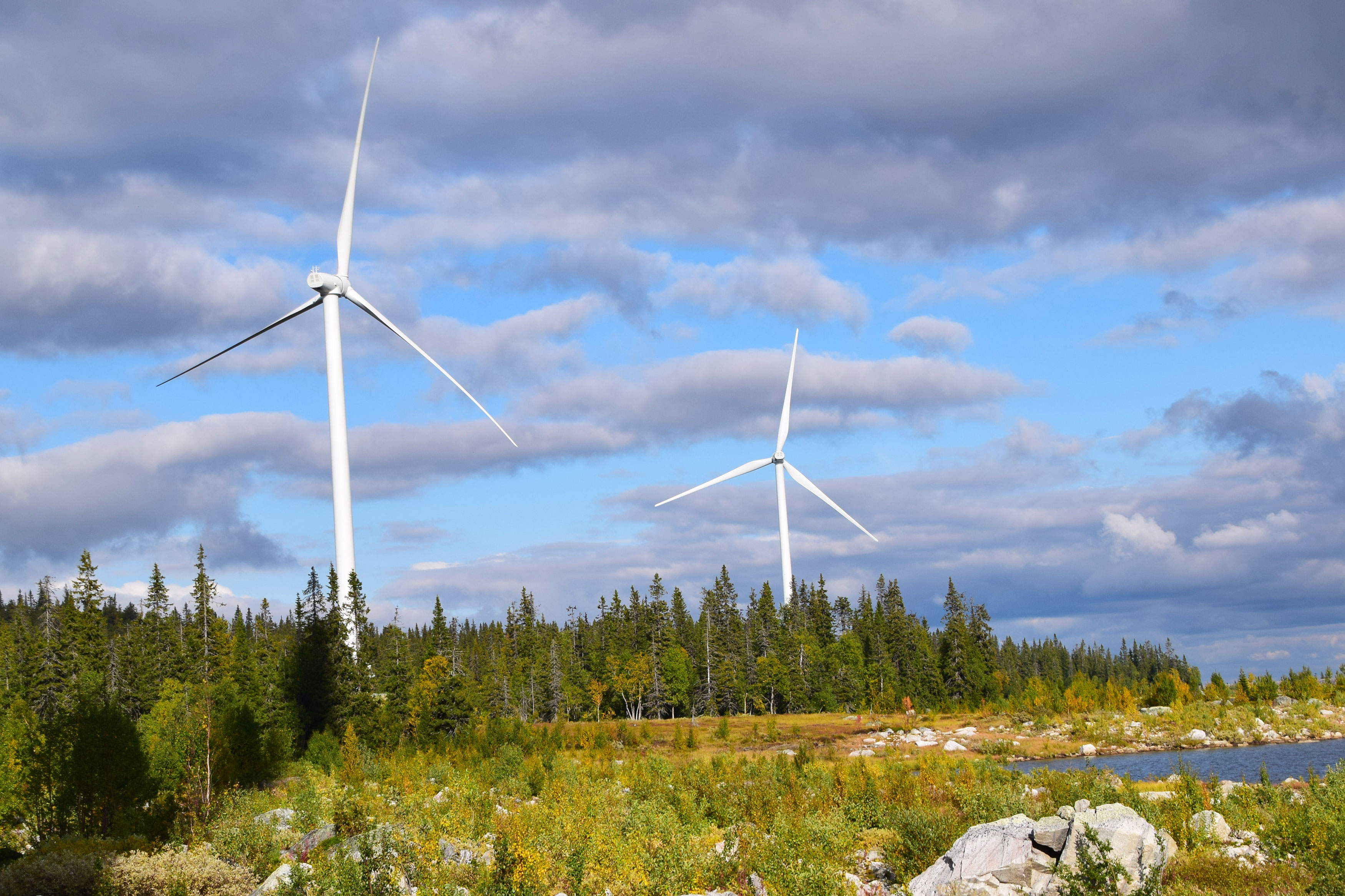 Vindkraft - fakta och fördelar med vindkraft | fortum.se